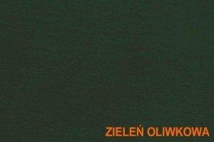 Kolor zieleń oliwkowa